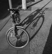Nederland, het land van fietsen!